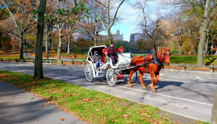 Hevosajelu Central Parkissa New Yorkissa