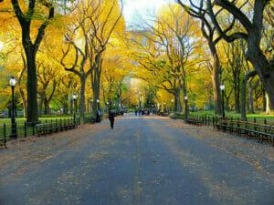 Central Park New Yorkissa