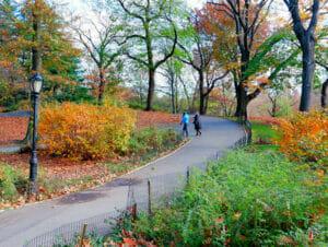 Puistot New Yorkissa