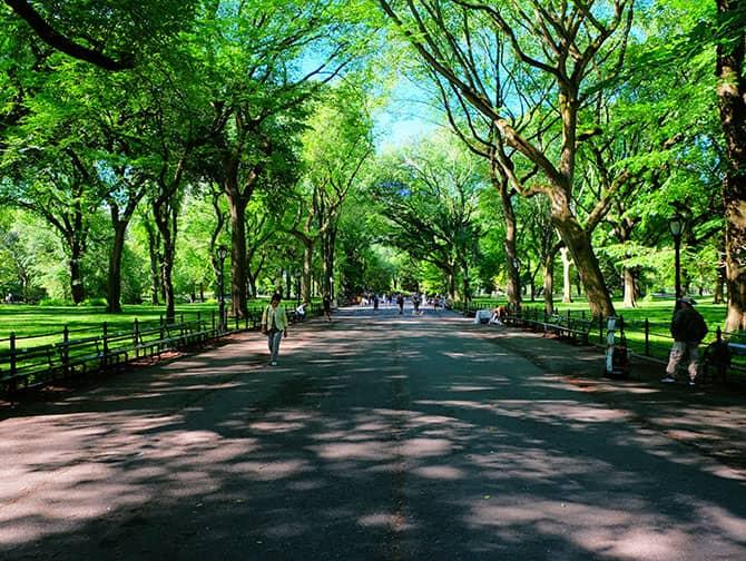 Labor Day New Yorkissa - Kävelyllä Central Parkissa