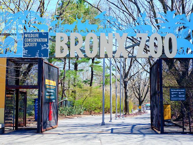 Bronx Zoo New Yorkissa