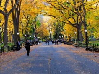 Opastettu kierros Central Parkin elokuvatapahtumapaikoilla - the mall
