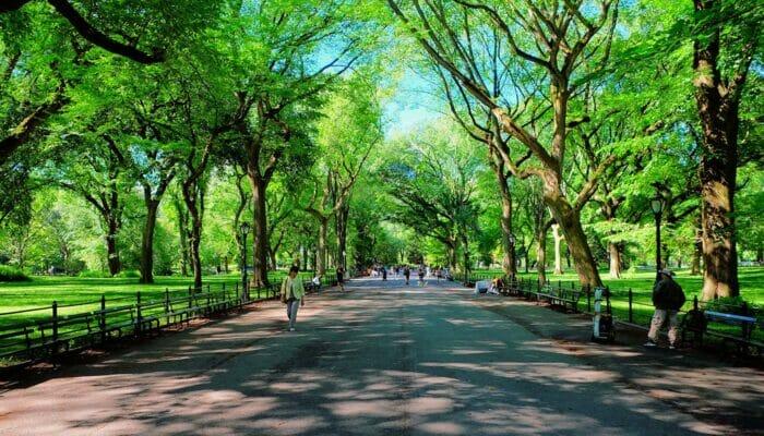 Äitienpäivä New Yorkissa - The Mall Central Parkissa