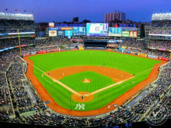 Bronx - New York Yankees Eric