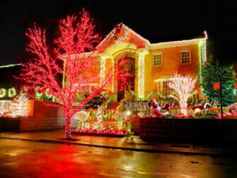 Yksityinen Dyker Heightsin joulukierros