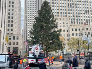 Ericin blogi - Rockefeller Christmas Tree