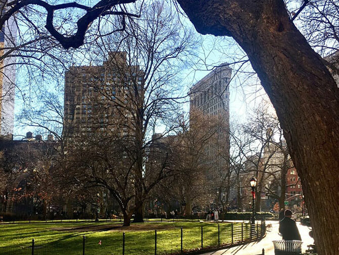 Flatiron Building New Yorkissa - Madison Square Park