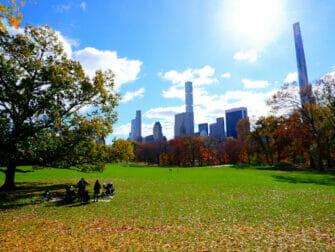 Puistot New Yorkissa - Central Parkissa