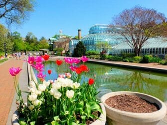 Kasvitieteelliset puutarhat New Yorkissa - Brooklyn Botanic Garden
