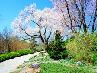 Kasvitieteelliset puutarhat New Yorkissa - New York Botanical Garden Bronxissa