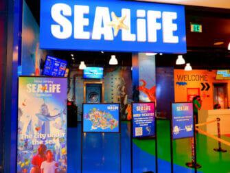 American Dream Mall New Yorkin lähellä - SEA LIFE Aquarium